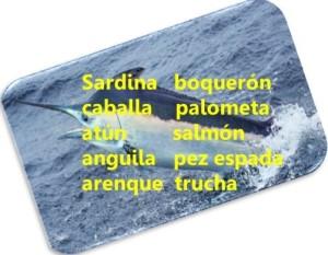 pescado-azul-2
